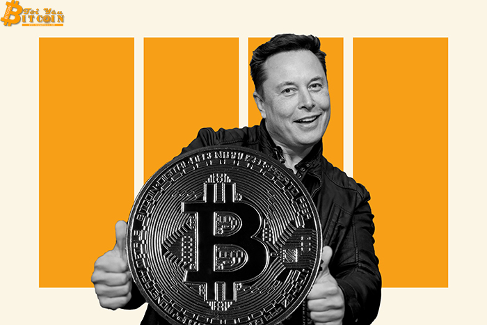 Elon Musk is looking to save Bitcoin