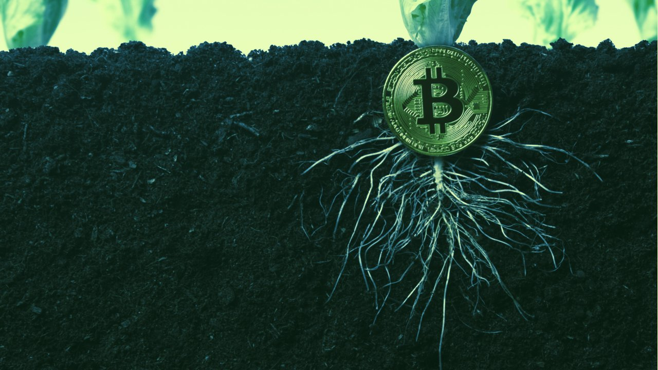 Bitcoin Taproot upgrade is scheduled to activate in November