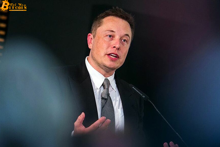 Investors want Elon Musk to stop 'driving' cryptocurrencies